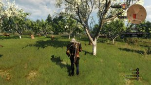The Witcher 3 Wild Hunt image screenshot 4