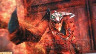 Hyrule Warriors Zelda Muso 22.05.2014  (4)