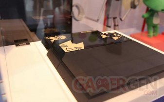 PS4 Toro Edition limitee collector dokodemo issho 06.05.2014  (3)