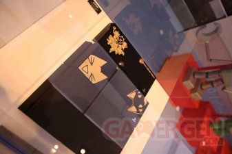 PS4 Toro Edition limitee collector dokodemo issho 06.05.2014  (4)