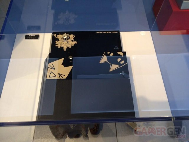 PS4 Toro Edition limitee collector dokodemo issho 06.05.2014  (5)
