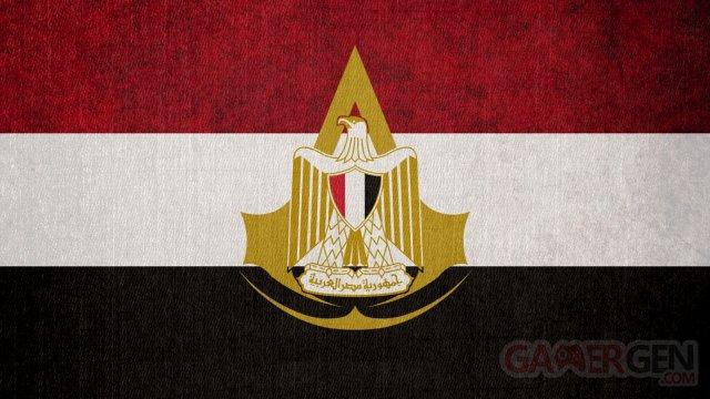 assassin_s_creed__flag_of_the_egyptian_bureau_by_okiir-d62ixax
