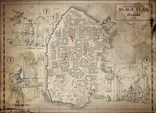 Assassin's Creed IV Black Flag 22.08.2013 (1)