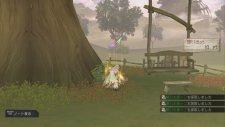 Atelier-Ayesha-Plus-The-Alchemist-of-Dusk_06-01-2014_screenshot-29