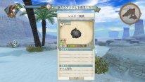 Atelier-Shallie-Alchemists-of-the-Dusk-Sea_01-06-2014_screenshot-21