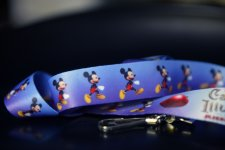 Castle of Illusion Starring Mickey Mouse concours Lanyards (4)