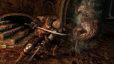Dark Souls II 12.02.2014  (14)