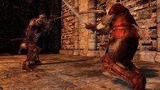 Dark Souls II 12.02.2014  (21)