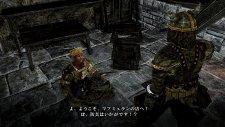 Dark Souls II 17.01.2014  (13)