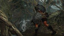 Dark Souls II 17.01.2014  (9)