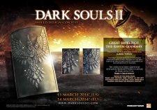 Dark-Souls-II_25-01-2014_bouclier-1