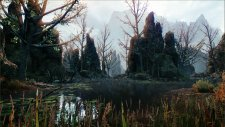 Dragon Age Inquisition 22.04.2014  (1)