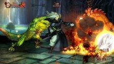 dragon's crown 0015