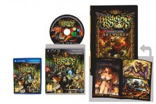 Dragon's Crown 10.09.2013.