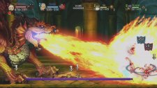 Dragon's Crown 21.07.2013 (20)