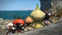 Final Fantasy XIV A Realm Reborn 24 06 2014 screenshot (13)