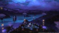 Final-Fantasy-XIV-A-Realm-Reborn-Defenders-of-Eorzea_14-06-2014_screenshot (10)