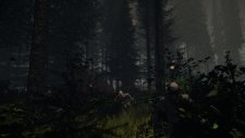 Forest-NightEnemies-noscale