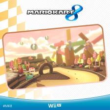 Mario Kart 8 06.04.2014  (2)