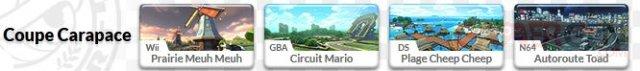 Mario Kart 8 Circuits 05.05.2014  (6)