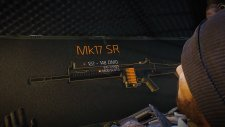 mk17-sr-the-division-guns