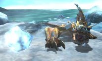 Monster-Hunter-4-Ultimate_05-06-2014_screenshot (12)