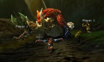 Monster-Hunter-4-Ultimate_05-06-2014_screenshot (19)