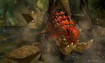 Monster-Hunter-4-Ultimate_05-06-2014_screenshot (8)