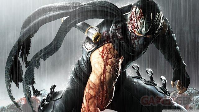 Ninja Gaiden 3 team 06.02.2014