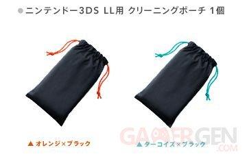Nintendo 3DS XL Pochette 23.10.2013 (1)
