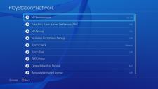 PlayStation 4 ps4 debug interface 22.04.2014  (13)