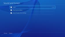 PlayStation 4 ps4 debug interface 22.04.2014  (1)