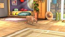 playstation vita pets 002