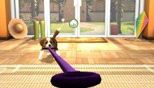 playstation vita pets 003