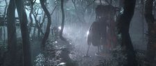 reset_forest_rain_OK