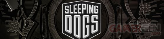 Sleeping-Dogs_banner