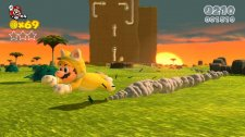 super_mario_3d_world-2