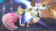 Super Smash Bros 12.09.2013 (4)