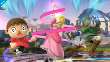 Super Smash Bros 12.09.2013 (6)