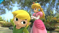 super smash bros. link cartoon wii u 004