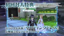 Sword Art Online Hollow Fragment 10.02 (1)