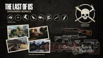 The-Last-of-Us_16-04-2014_Pack-Réaliste-1