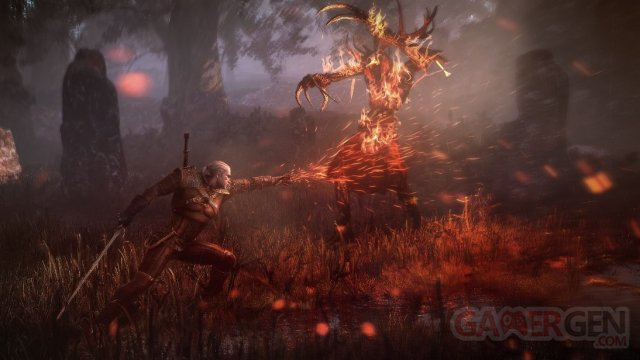The Witcher 3 Wild Hunt 009
