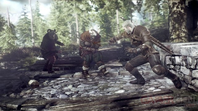 The Witcher 3 Wild Hunt 010