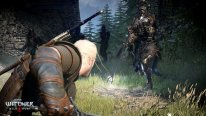 The-Witcher-3-Wild-Hunt_05-06-2014_screenshot-1