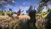 The-Witcher-3-Wild-Hunt_05-06-2014_screenshot-3