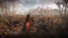 The-Witcher-3-Wild-Hunt_28-01-2014_screenshot-1