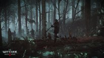 The-Witcher-3-Wild-Hunt-Traque-Sauvage_14-06-2014_screenshot-17