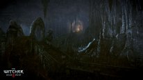 The-Witcher-3-Wild-Hunt-Traque-Sauvage_14-06-2014_screenshot-2