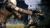 The-Witcher-3-Wild-Hunt-Traque-Sauvage_14-06-2014_screenshot-4